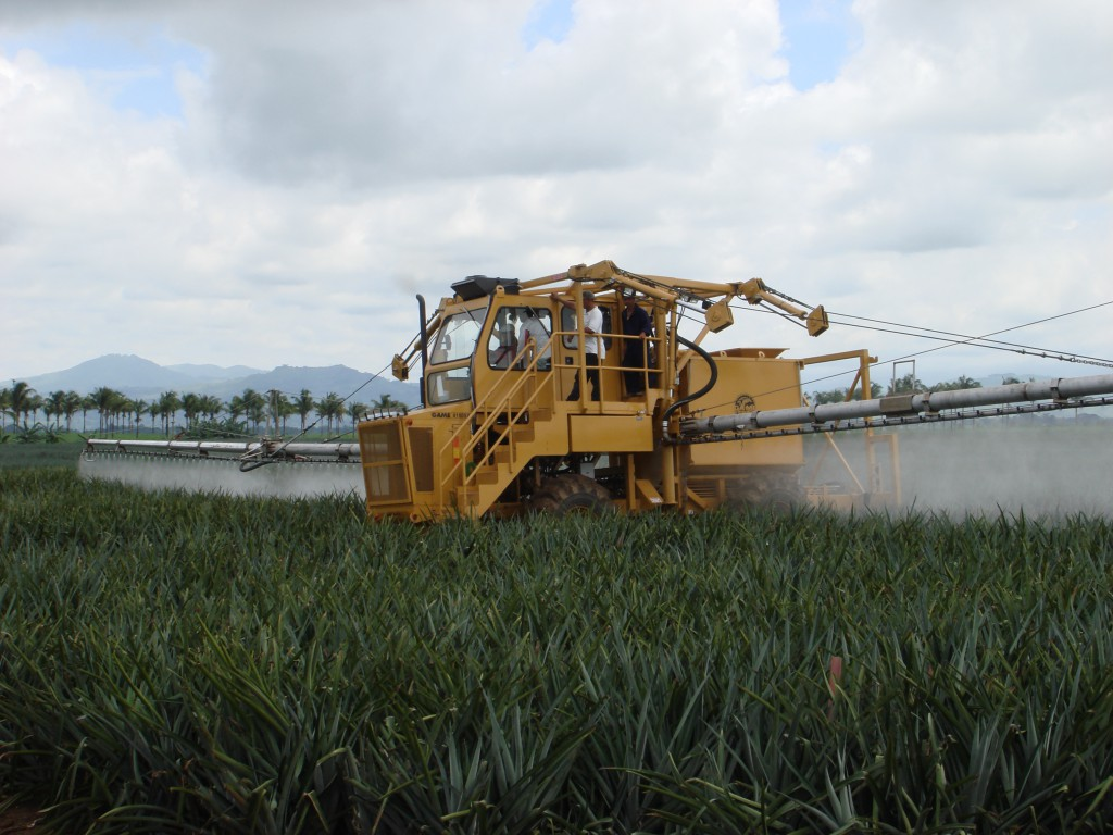 Pineapple sprayer4